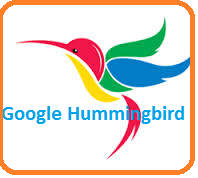 Will google hummingbird search algorithm affect your seo ?