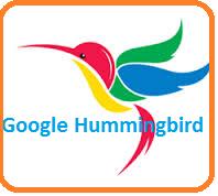 Will google hummingbird search algorithm affect your seo ?
