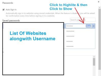 Chrome Password Manager Revealer