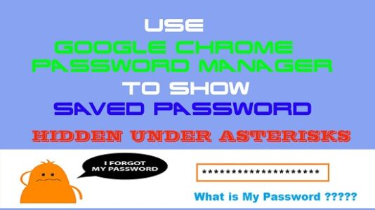 Use Google Chrome Password Manager to show Saved Password Hidden under asterisks