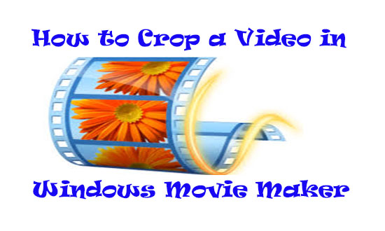 crop a video in windows movie maker